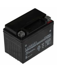 Аккумуляторная батарея Luxeon LT4