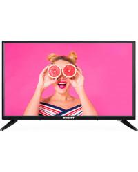Телевизор Romsat 24HX1950T2
